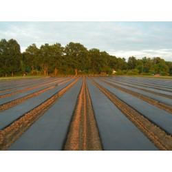 Agrotextils 50 g/m2 melns 3,2 x 100 m