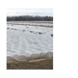 Agro plėvelė 17 g/m2 balta 12,65 m x 100 m